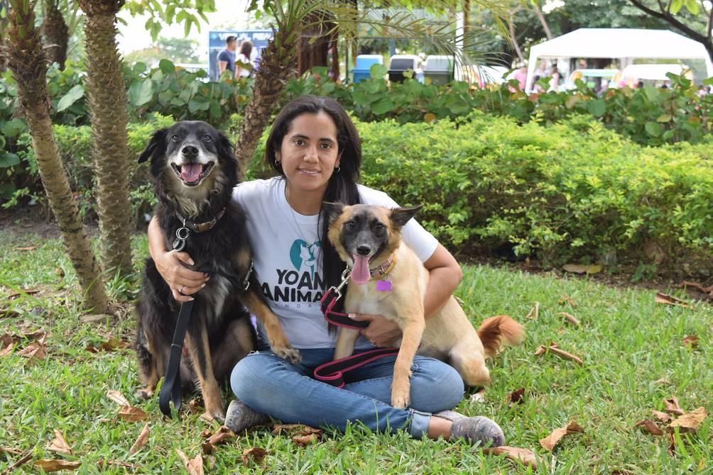 Hoy es el Día del Perro: estas cuatro fundaciones  luchan por los derechos de las mascotas   Sociedad   La Revista   El Universo
